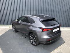 Lexus-NX-9