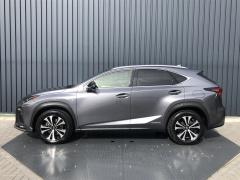 Lexus-NX-10