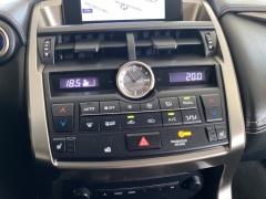 Lexus-NX-27